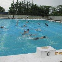 水泳学習が始まりました。
